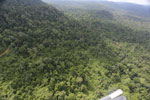 Aerial view of heavily logged rainforest -- sabah_aerial_2730