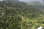 Aerial view of heavily logged rainforest -- sabah_aerial_2734