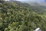 Selectively logged forest under FSC criteria -- sabah_aerial_2738