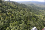 Selectively logged forest under FSC criteria -- sabah_aerial_2740
