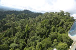 Selectively logged forest under FSC criteria -- sabah_aerial_2772