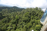 Selectively logged forest under FSC criteria -- sabah_aerial_2773