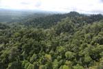 Selectively logged forest under FSC criteria -- sabah_aerial_2774