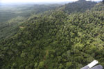 Heavily logged rainforest with an oil palm plantation in the distance -- sabah_aerial_2790