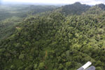 Heavily logged rainforest with an oil palm plantation in the distance -- sabah_aerial_2792