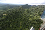Heavily logged rainforest with an oil palm plantation in the distance -- sabah_aerial_2796