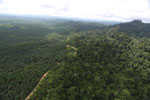 Logged forest and oil palm in Borneo -- sabah_aerial_2798