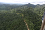 Logged forest and oil palm in Borneo -- sabah_aerial_2813