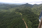 Logged forest and oil palm in Borneo -- sabah_aerial_2814