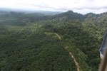 Logged forest and oil palm in Borneo -- sabah_aerial_2816
