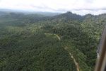 Logged forest and oil palm in Borneo -- sabah_aerial_2817