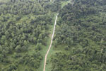 Logging road through heavily degraded forest -- sabah_aerial_2836