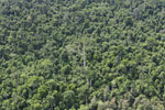 Heavily logged forest in Borneo -- sabah_aerial_2841