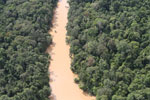 Kinabatangan River -- sabah_aerial_2851