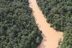 Kinabatangan River -- sabah_aerial_2856