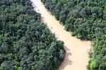 Kinabatangan River -- sabah_aerial_2859