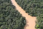 Kinabatangan River -- sabah_aerial_2861