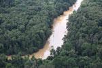 Kinabatangan River -- sabah_aerial_2873