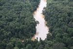 Kinabatangan River -- sabah_aerial_2879