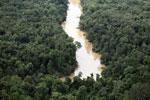 Kinabatangan River -- sabah_aerial_2884