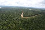 Kinabatangan River -- sabah_aerial_2893