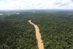 Kinabatangan River -- sabah_aerial_2896