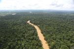Kinabatangan River -- sabah_aerial_2898