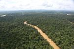 Kinabatangan River -- sabah_aerial_2904