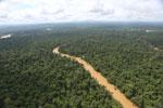 Kinabatangan River -- sabah_aerial_2905