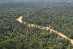 Kinabatangan River -- sabah_aerial_2910