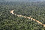 Kinabatangan River -- sabah_aerial_2912