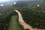 Clearing for oil palm along the Kinabatangan River  -- sabah_aerial_2917