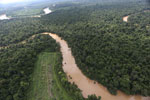 Clearing for oil palm along the Kinabatangan River  -- sabah_aerial_2918