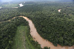 Clearing for oil palm along the Kinabatangan River  -- sabah_aerial_2920