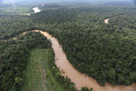 Clearing for oil palm along the Kinabatangan River  -- sabah_aerial_2921