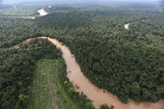 Clearing for oil palm along the Kinabatangan River  -- sabah_aerial_2922