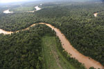 Clearing for oil palm along the Kinabatangan River  -- sabah_aerial_2924
