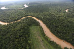 Clearing for oil palm along the Kinabatangan River  -- sabah_aerial_2925