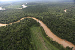 Clearing for oil palm along the Kinabatangan River  -- sabah_aerial_2927