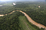 Clearing for oil palm along the Kinabatangan River  -- sabah_aerial_2928