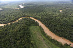 Clearing for oil palm along the Kinabatangan River  -- sabah_aerial_2929
