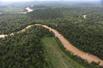 Clearing for oil palm along the Kinabatangan River  -- sabah_aerial_2930