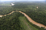 Clearing for oil palm along the Kinabatangan River  -- sabah_aerial_2931