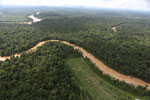 Clearing for oil palm along the Kinabatangan River  -- sabah_aerial_2933