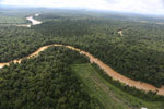 Clearing for oil palm along the Kinabatangan River  -- sabah_aerial_2935