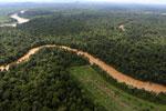 Clearing for oil palm along the Kinabatangan River  -- sabah_aerial_2936