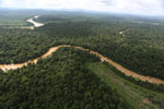 Clearing for oil palm along the Kinabatangan River  -- sabah_aerial_2939