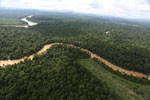 Clearing for oil palm along the Kinabatangan River  -- sabah_aerial_2941