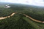 Clearing for oil palm along the Kinabatangan River  -- sabah_aerial_2942