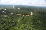 Forest degradation along the Kinabatangan River  -- sabah_aerial_2945